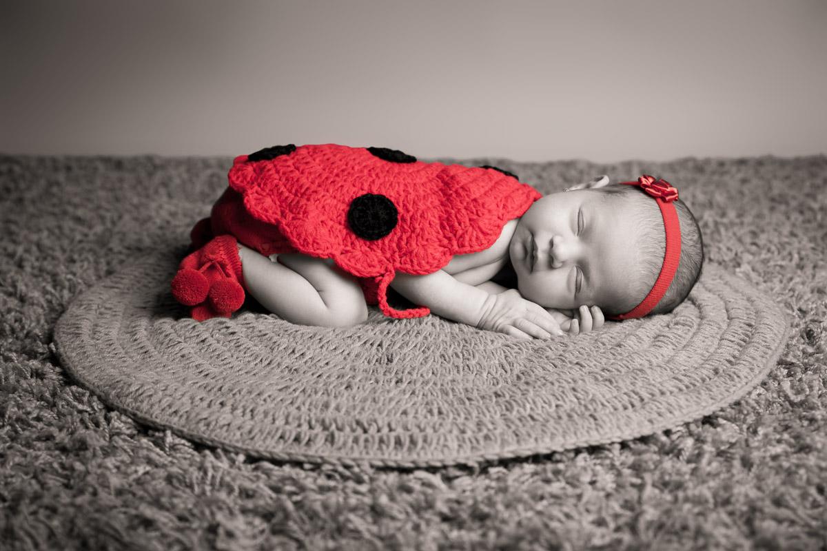 Fotografía de Bebés | Books de Recién Nacido | Fotografía Profesional